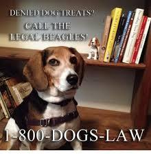 Law Dog Meme - denied dog treats call the legal beagles 1 800 dogs law meme on me me