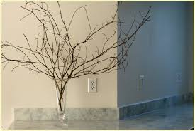decorative branches with lights uncategorized decorative tree branches purecolonsdetoxreviews home