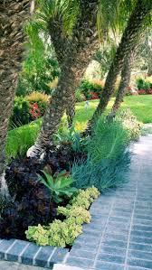23 best fynbos garden design images on pinterest south africa