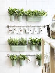 diy indoor vertical garden best 25 indoor vertical gardens ideas