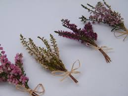 mini dried lucky heather flowers 2 weeks daisyshop r and j
