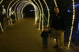 Potter Park Zoo Lights by Journeyleaf Life A Page At A Time Oakland Zoo Lights