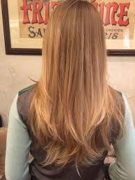redken strawberry blonde hair color formulas formula how to honey wheat blonde hair color blondes hair