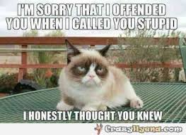 Meme Angry Cat - 21 best grumpy cat memes and funny quotes about love life