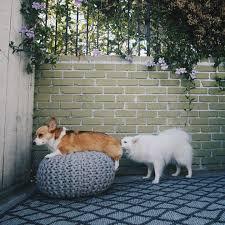 Trellis Outdoor Rug 199 Best Outdoor Space Images On Pinterest Outdoor Rooms