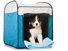 training a australian shepherd puppy crate training puppy
