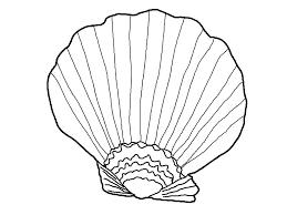 sea grass clipart seashell pencil and in color sea grass clipart