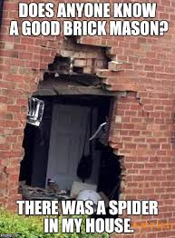 Kill Spider Meme - kill it with fire imgflip