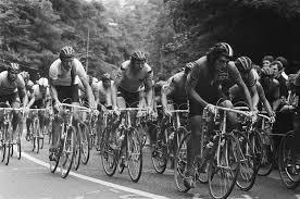 Championnats du monde de cyclisme sur route 1979
