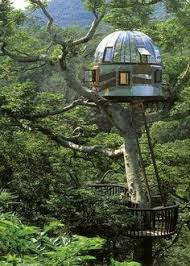 Tree House Home Escape Into This Stunning Treehouse Seattle Met And Magazines