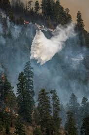Arizona Firefighters Killed 2015 by 442 Best Summer Life Images On Pinterest Volcano Firefighters