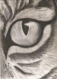 image result for animal sketching sketch pinterest drawings