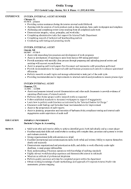 Resume Experts Intern Internal Audit Resume Samples Velvet Jobs