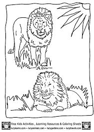 25 lion coloring pages ideas mandala lion