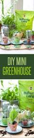 Diy Spring Projects by 31 Awesome Diy Tips For Spring Gardening Diy Joy