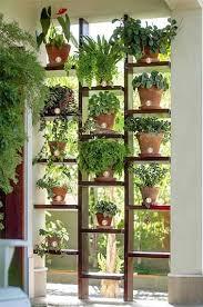 plante cuisine decoration mur végétal de plantes en pot pour faire une séparation extérieure
