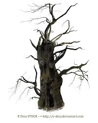 spooky clipart hq png stock spooky tree mann by e dinaphotoart on clipart library