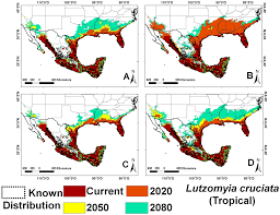 Brown Recluse Map Current And Future Niche Of North And Central American Sand Flies
