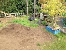 garden project andys shohin bonsai
