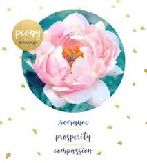 wedding flowers meaning peonies meaning wedding flower the peony bridal shower