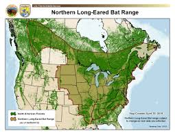 Northern United States Map by Grda Grda Usfws Share Information On Northern Long Eared Bat