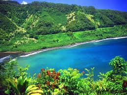 beach resort maui trendwest resort