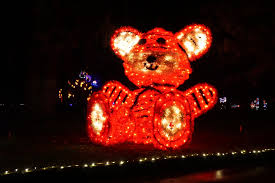 Zoo Lights Pt Defiance by Drive Through Christmas Lights At Fantasy Lights