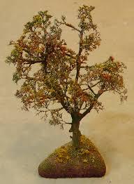 oak trees in the fall the denver durango silverton railroad