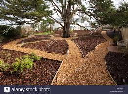 garden paths wood chippings laid as garden paths wooden edging and bark stock