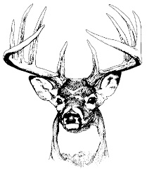 deer tracks tattoo design on the arm clip art library