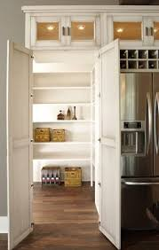 Kitchen Pantry Designs by Which Storage Solution Is Best For Your Kitchen Hidden Pantry