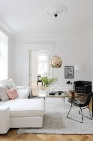 fashionable and stylish interior with minimalist decorations
