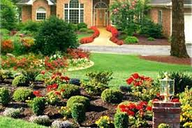 Florida Backyard Landscaping Ideas Florida Backyard Ideas Twwbluegrass Info