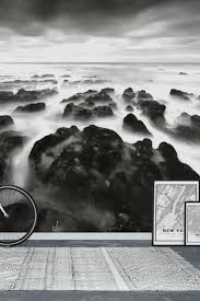 34 best water wall murals images on pinterest photo wallpaper dramatic coast black and white wall mural wallpaper
