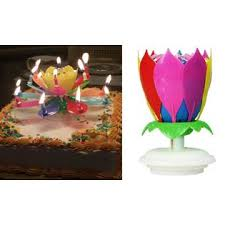 amazing birthday candle exciting candle 2 two various color amazing lotus flower happy