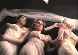 Tina Fey Vanity Fair Pics Amy Poehler Gifs Find U0026 Share On Giphy