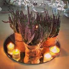 Lavender Decor Candle Decoration At Home Gallery Of How To Add Warmth With