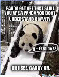 Panda Meme - science panda meme by cthurman432 memedroid