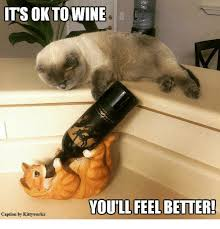 Feel Better Meme - ts oktowine youill feel better feel better caption by kittyworks
