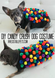Candy Crush Halloween Costume 15 Diy Halloween Costumes Images Halloween