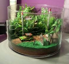 638 best terrariums and tiny gardens images on pinterest