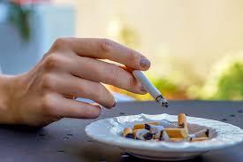 gerüche neutralisieren wohnung rauchgeruch in der wohnung entfernen putzen de