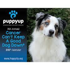 australian shepherd 2016 calendar puppy up foundation 2017 puppyup calendar