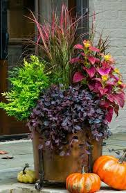 Porch Planter Ideas by Best 10 Fall Front Porches Ideas On Pinterest Fall Porch