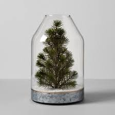 glass vase with tree hearth with magnolia target