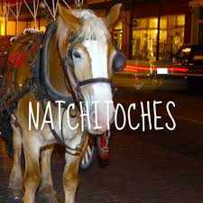 plan to attend the natchitoches christmas festival