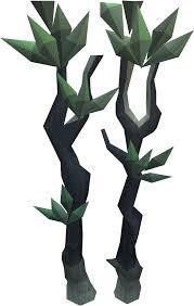 Fruit Trees Runescape - blood spindle tree runescape wiki fandom powered by wikia