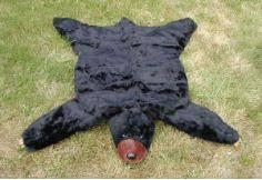 bear skin rug plush and fur on pinterest