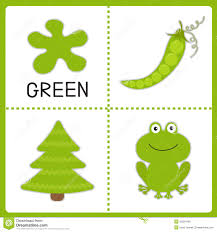 learning green color frog green pea and fir tree educational