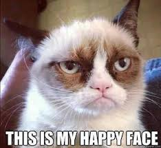 Grumpy Cat Meme Happy - grumpy cat happy face some pets
